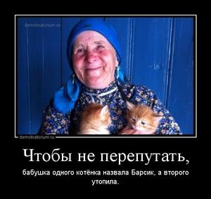 Демотиватор Чтобы не перепутать, бабушка одного котёнка назвала Барсик, а второго утопила.