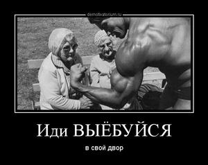 демотиватор Иди ВЫЁБУЙСЯ в свой двор - 2014-3-12