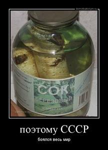 Демотиватор поэтому СССР боялся весь мир