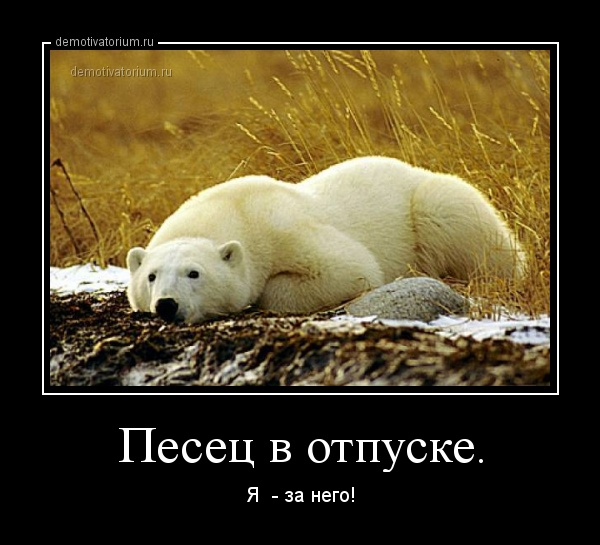 https://demotivatorium.ru/sstorage/3/2014/03/28223940132638/demotivatorium_ru_pesec_v_otpuske_44016.jpg