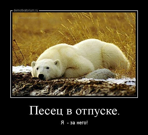 demotivatorium_ru_pesec_v_otpuske_44016.