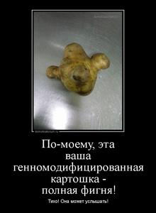 Демотиватор По-моему, эта ваша генномодифицированная картошка - полная фигня! Тихо! Она может услышать!