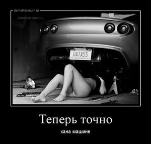 Мотиватор секс в машине