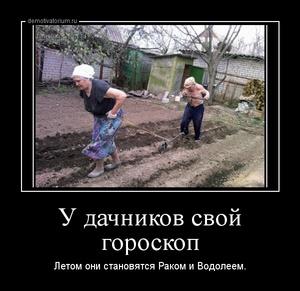 демотиватор У дачников свой гороскоп  Летом они становятся Раком и Водолеем. - 2014-4-20