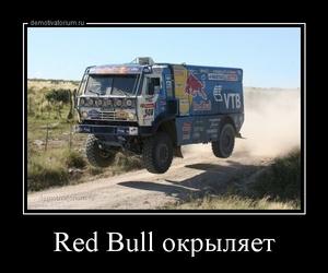 демотиватор Red Bull окрыляет  - 2014-4-20