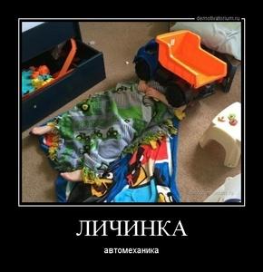Демотиватор ЛИЧИНКА автомеханика