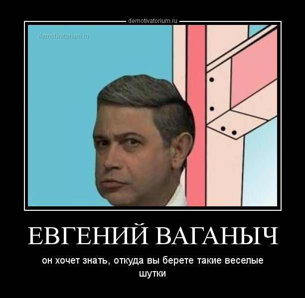 demotivatorium_ru_evgenij_vaganich_47391