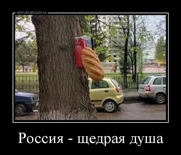 Россия щедрая душа картинки прикольные, для