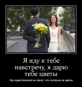 демотиватор Я иду к тебе навстречу, я дарю тебе цветы Как единственной на свете, кто согласна за цветы - 2014-6-11