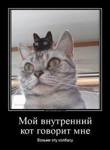 Демотиватор Мой внутренний кот говорит мне Возьми эту колбасу