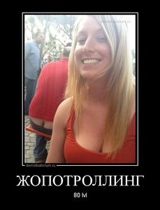 демотиватор ЖОПОТРОЛЛИНГ 80 lvl - 2014-6-26