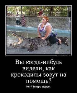 демотиватор Вы когда-нибудь видели, как крокодилы зовут на помощь? Нет? Теперь видели. - 2014-6-29