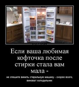 Демотиватор Если ваша любимая кофточка после стирки стала вам мала - не спешите винить стиральную машину - скорее всего, виноват холодильник