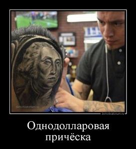 Демотиватор Однодолларовая причёска