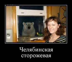 демотиватор Челябинская сторожевая  - 2014-8-27