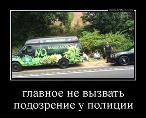 демотиватор главное не вызвать подозрение у полиции  - 2014-8-27