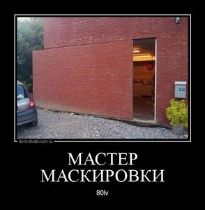 демотиватор МАСТЕР МАСКИРОВКИ 80lv