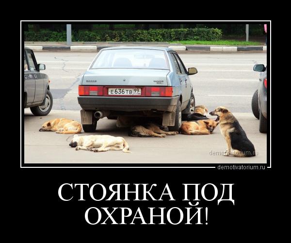 demotivatorium_ru_stojanka_pod_ohranoj_5