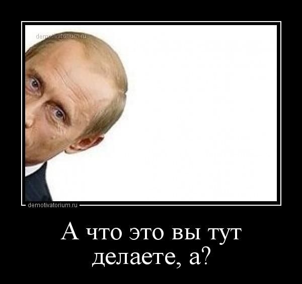 demotivatorium_ru_a_chto_eto_vi_tut_dela