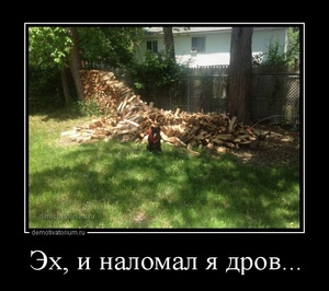 Демотиватор Эх, и наломал я дров...