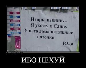 Демотиватор ИБО НЕХУЙ