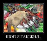 Демотиватор ШОП Я ТАК ЖИЛ..