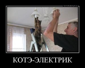 Демотиватор КОТЭ-ЭЛЕКТРИК