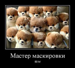 демотиватор Мастер маскировки 80 lvl