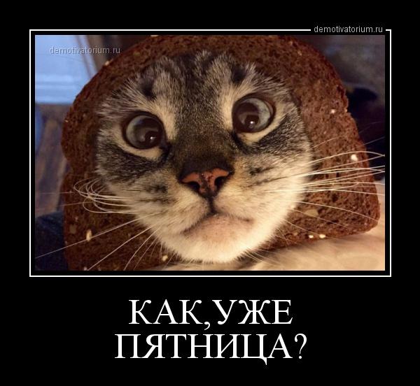 demotivatorium_ru_kakuje_pjatnica_61769.