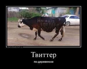 Демотиватор Твиттер по-деревенски