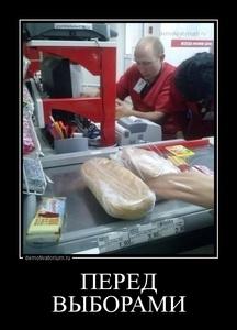 демотиватор ПЕРЕД ВЫБОРАМИ  - 2014-11-27