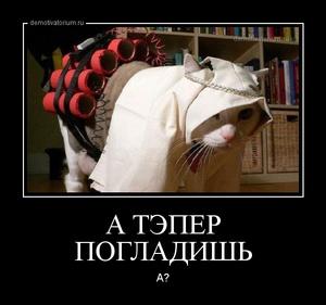 демотиватор А ТЭПЕР ПОГЛАДИШЬ  А? - 2014-11-29