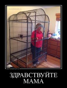 демотиватор ЗДРАВСТВУЙТЕ МАМА