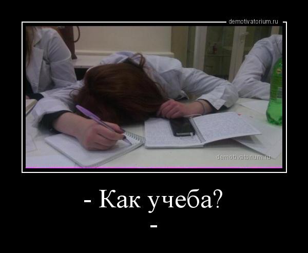 демотиватор - Как учеба?-  - 2015-3-15