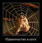 Демотиватор Одиночество в сети  - 2015-7-17