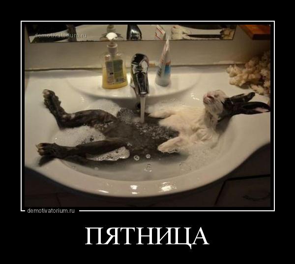 демотиватор ПЯТНИЦА  - 2015-10-01