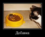 Демотиватор Добавка  - 2016-4-02
