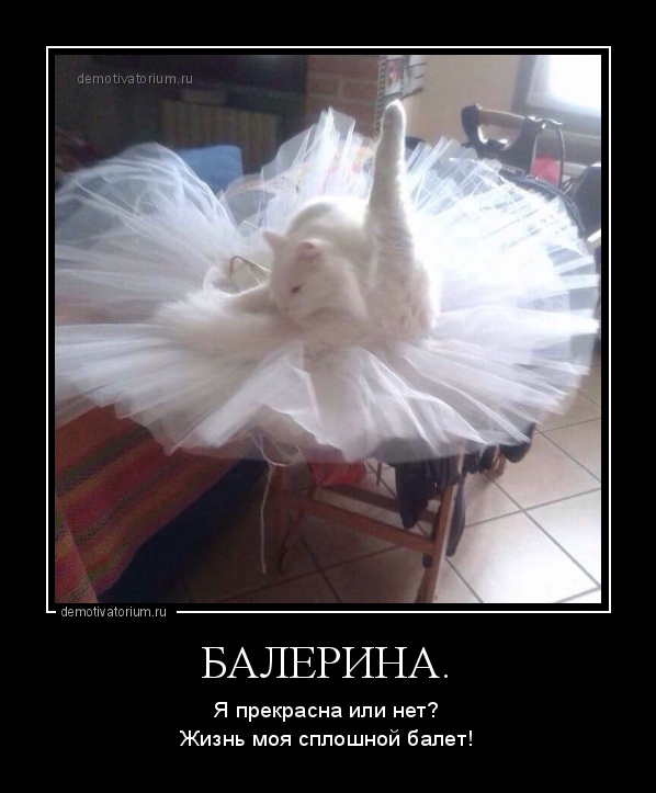 демотиватор БАЛЕРИНА. Я прекрасна или нет?Жизнь моя сплошной балет! - 2016-6-28