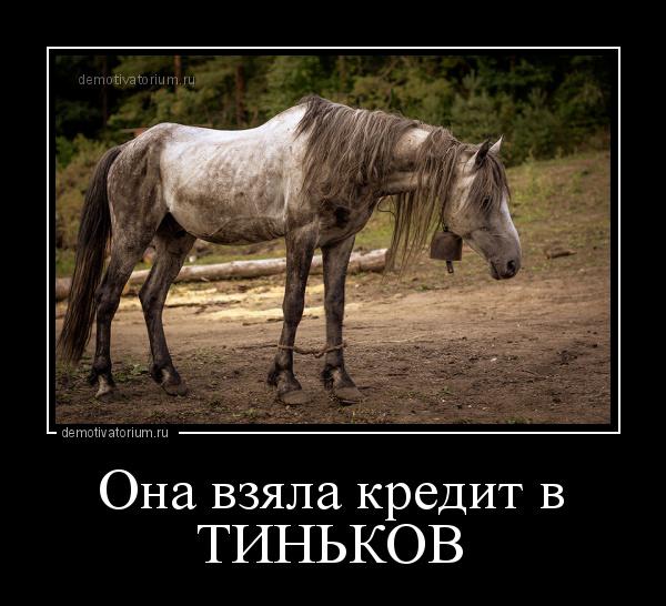 демотиватор Она взяла кредит в ТИНЬКОВ  - 2017-9-17