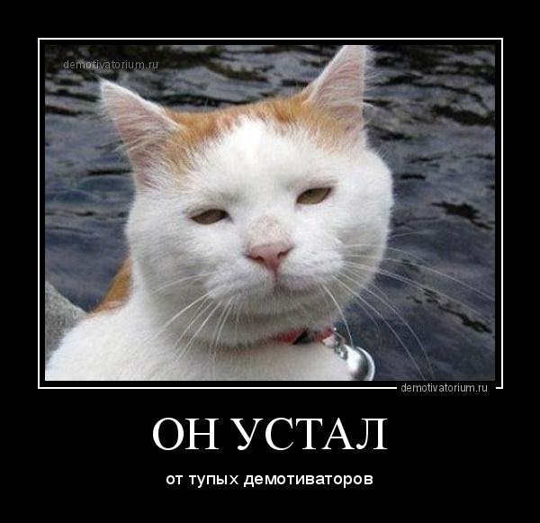 демотиватор ОН УСТАЛ от тупых демотиваторов - 2017-11-24