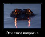 Демотиватор Эти глаза напротив  - 2018-3-29