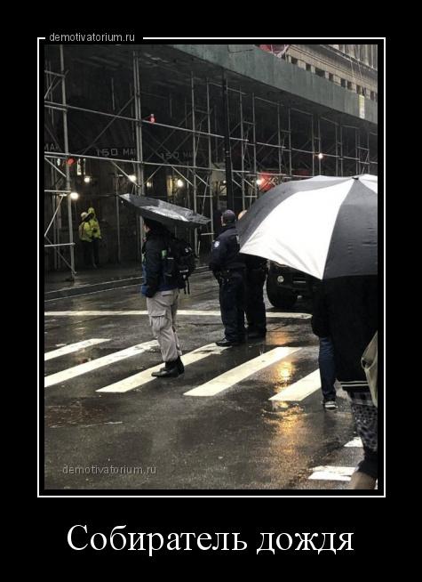 демотиватор Собиратель дождя  - 2020-1-28