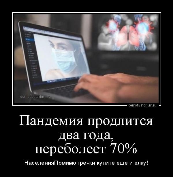 демотиватор Пандемия продлится два года, переболеет 70% НаселенияПомимо гречки купите еще и елку! - 2020-3-25