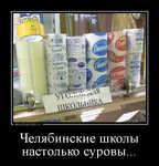 Демотиватор Челябинские школы настолько суровы...