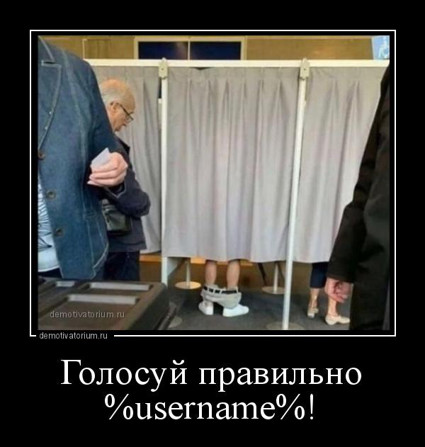 демотиватор Голосуй правильно %username%!  - 2020-9-14
