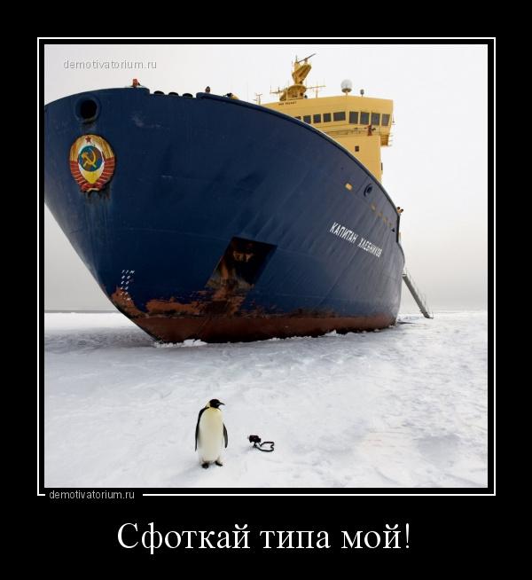 демотиватор Сфоткай типа мой!  - 2020-9-23