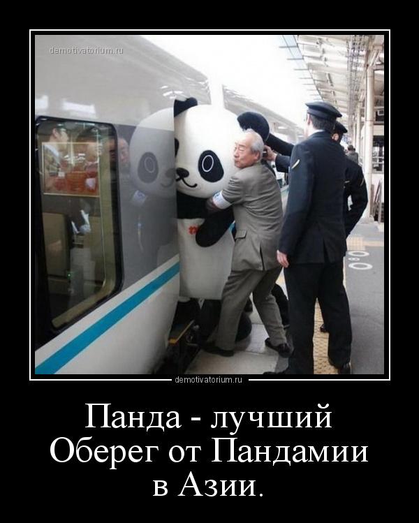 демотиватор Панда - лучший Оберег от Пандамии в Азии.  - 2020-12-01